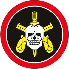 הלוגו של יחידת BOSE שקציניה עברו הכשרות ישאליות